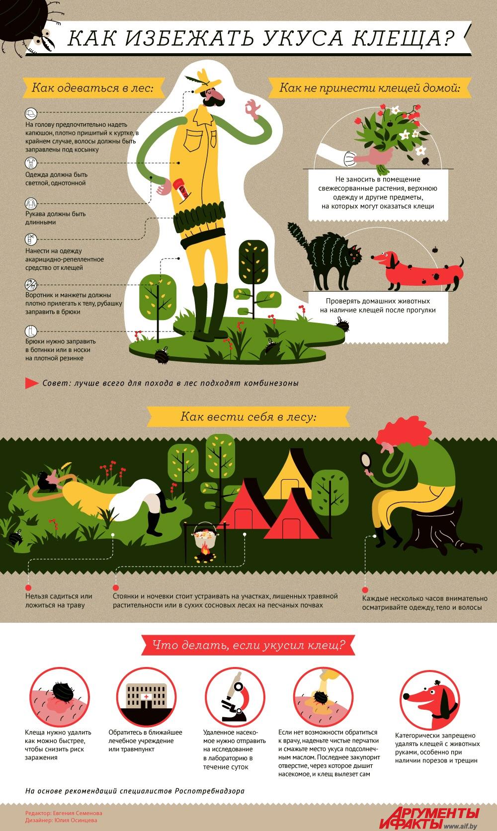 Как избежать укуса клеща? Инструкция в инфографике