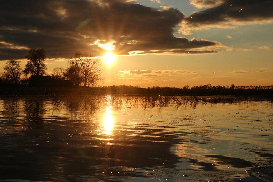 Припятский парк