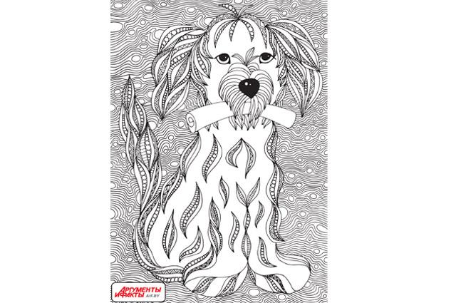 пес, рисунок