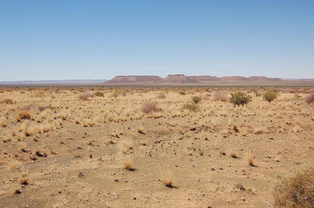 Зулусы, пустыня